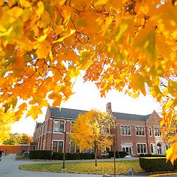 Fall Campus Scenics