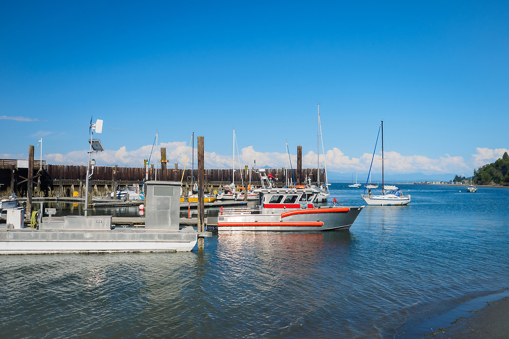 North America, United States, Washington, Whidbey Island, Langley, boats in marina