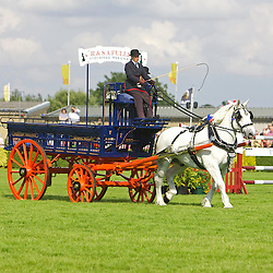 Great Yorkshire Show 2015 Single Turnouts & Carts