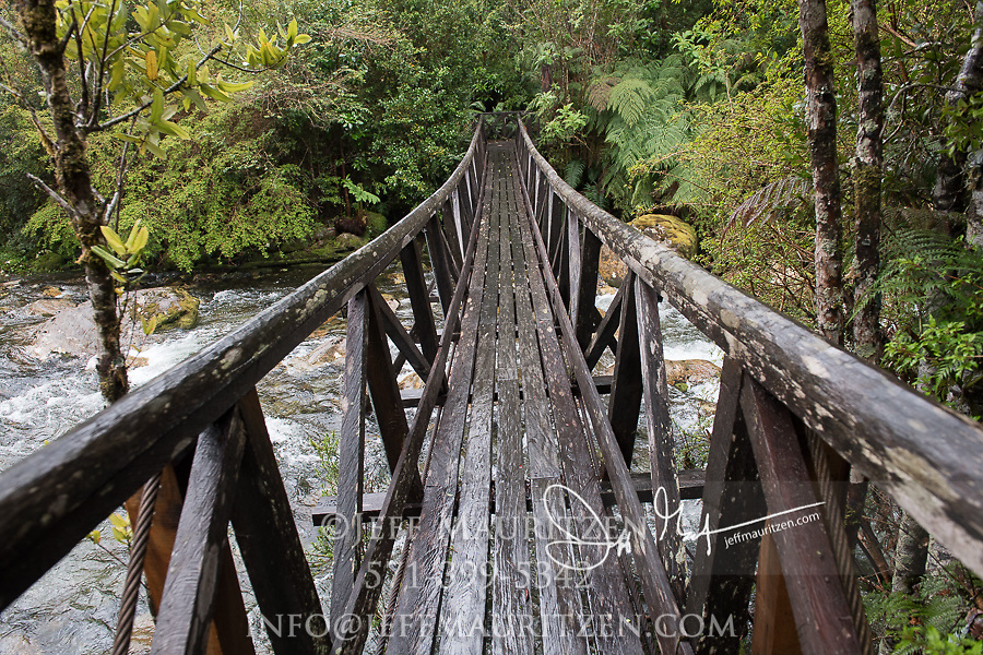 Wooden bridge in Pumalin National Park, Chile.