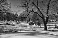 Slushy snow at the sailboat pond in a warming Central Park