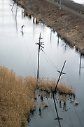 old in disuse wire poles standing in water falling over