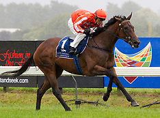 Hastings-Racing, Lowland Stakes