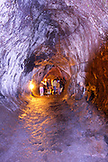 Thurston Lava Tube Hawaii Volcanoes National Park