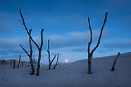 Dunescapes