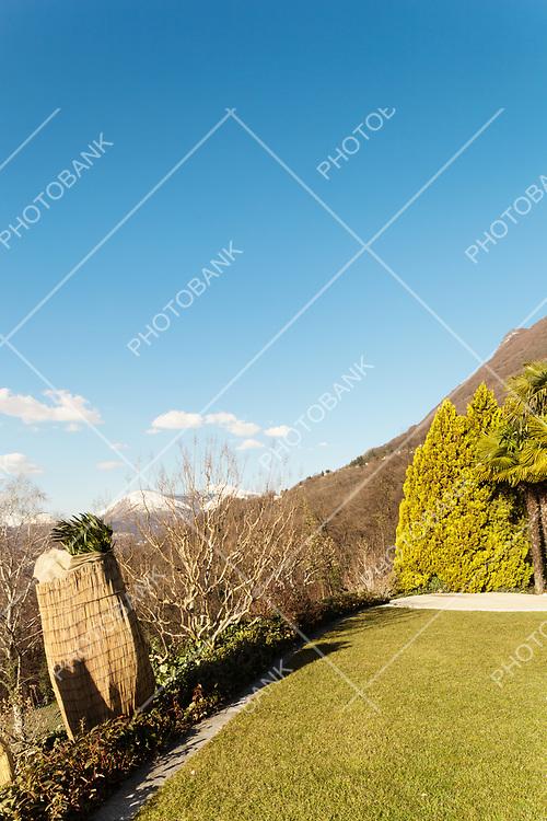 garden of a villa, clear sky
