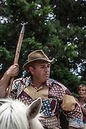 France. Bouches du Rhone.marking young bull ceremony near Arles,   /  ferrade des taureaux pres de Arles,marquage des jeunes taurillons aux fers rouges