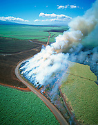 Sugar Cane Burning, Maui, Hawaii, USA<br />