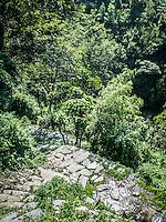 Annapurna trail views