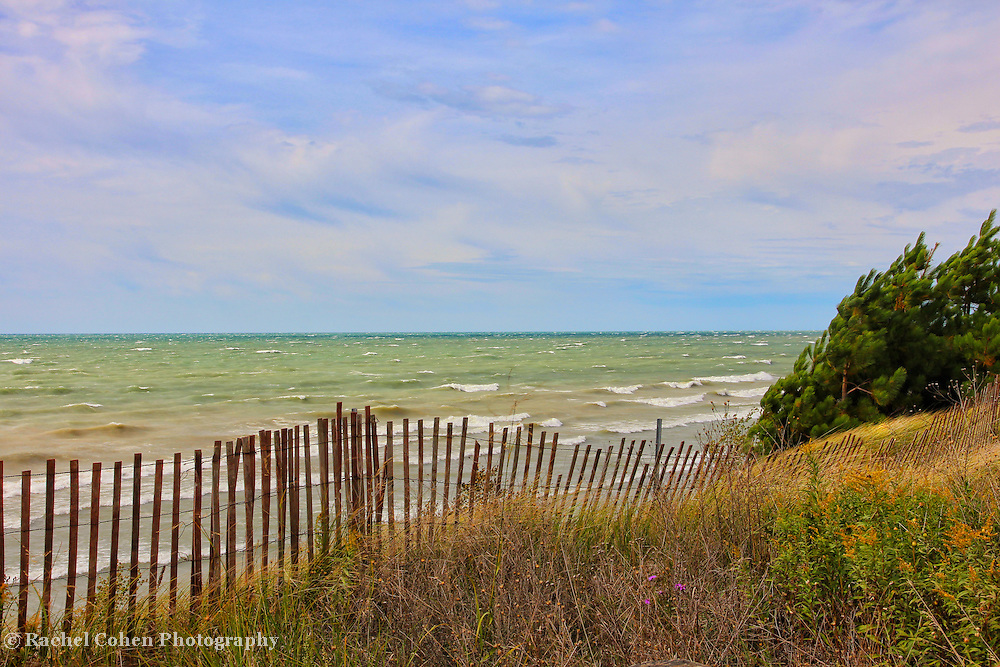 &quot;When the Boughs Bend&quot;<br />