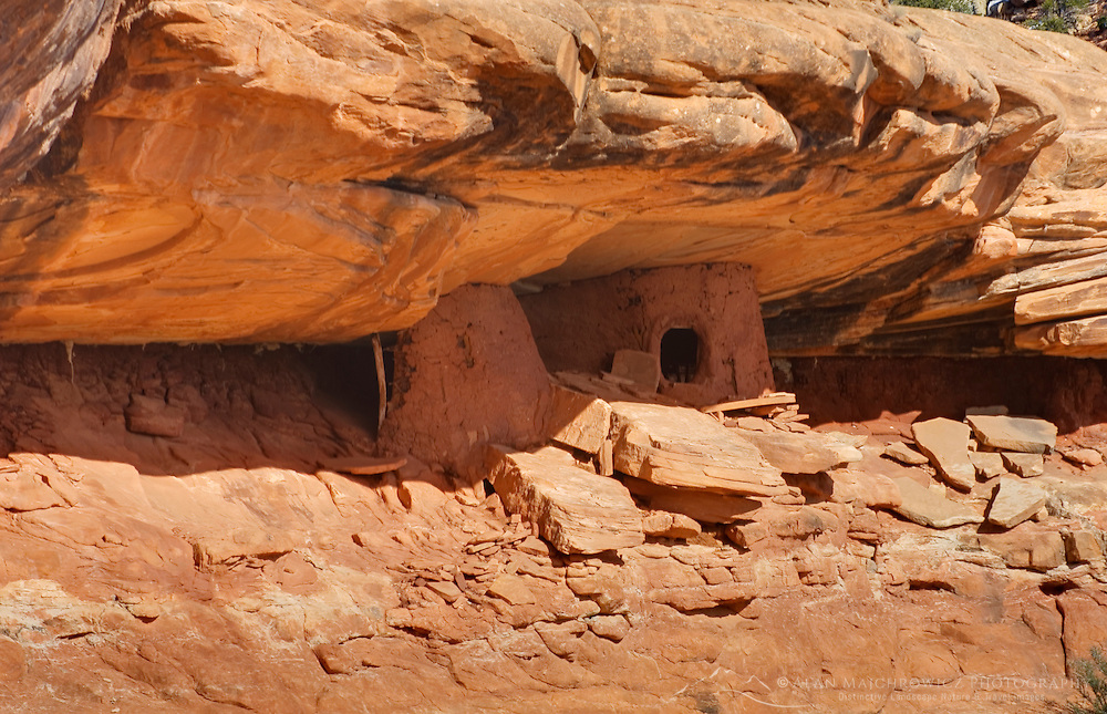 Anasazi ruins tucked beneath a cliff in Road Canyon, Grand Gulch Primitive Area, Cedar Mesa Utah Bears Ears National Monument
