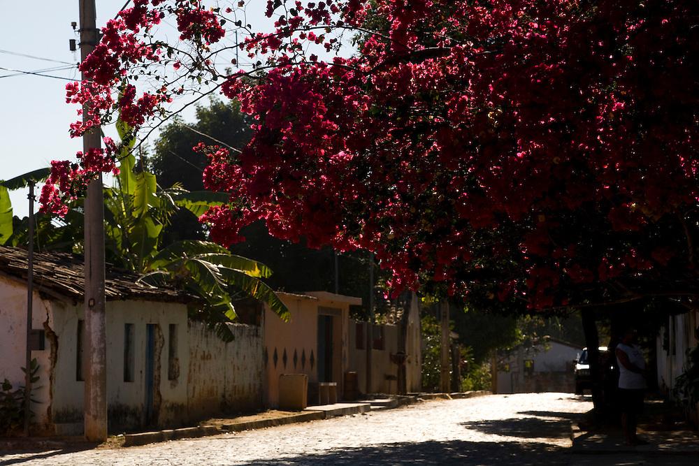 Januaria_MG, Brasil...Municipio de Januaria, Minas Gerais...The Januaria community, Minas Gerais...Foto: LEO DRUMOND / NITRO