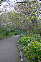 Merrion Square Park, Dublin, Ireland