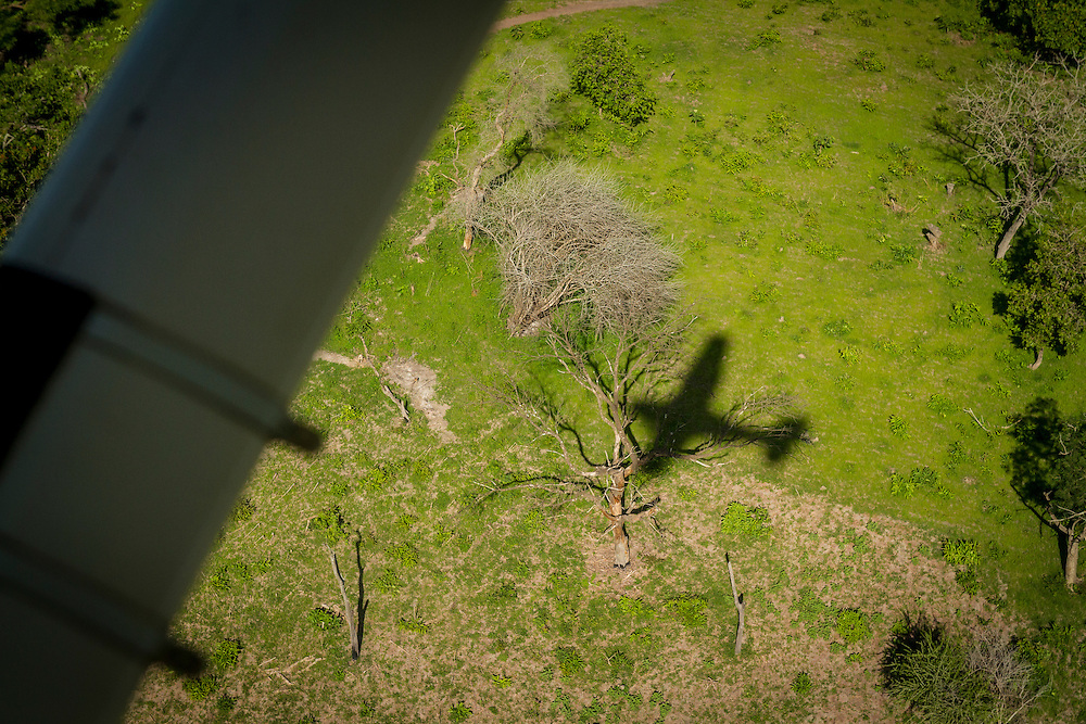 The shadow of the 206 upon approach to Akot.
