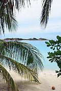 Island through palm trees - Pulau Redang, Malaysia <br />