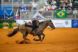 SÜCHTING Markus (GER), Spotlight Charly<br /> Tryon - FEI World Equestrian Games™ 2018<br /> Reining Finale Einzelentscheidung<br /> September 2018<br /> © www.sportfotos-lafrentz.de/Stefan Lafrentz