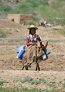 Yemen, Hodeidah, woman riding a donkey in search of water.