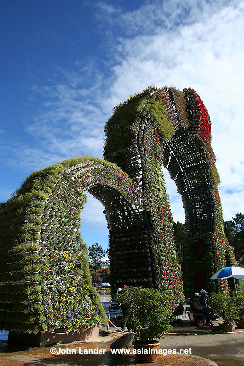 Bower at the Dalat Flower Gardens. The temperate climate of Dalat is very suitable for flowers such as orchids, roses, lilies, and camellias.  Dalat also is famous for its abundant produce especially strawberries.