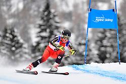 Downhill, PEMBLE Mel, LW9-2, CAN at the WPAS_2019 Alpine Skiing World Championships, Kranjska Gora, Slovenia