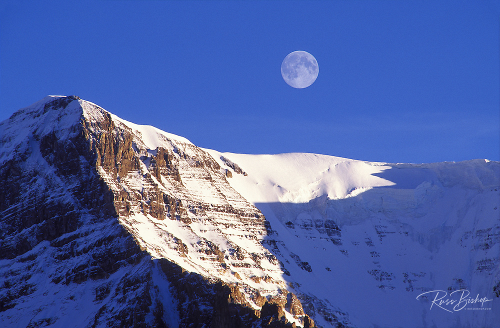 Moonrise and evening light on Mount Andromeda, Columbia Icefields area, Jasper National Park, Alberta, Canada.