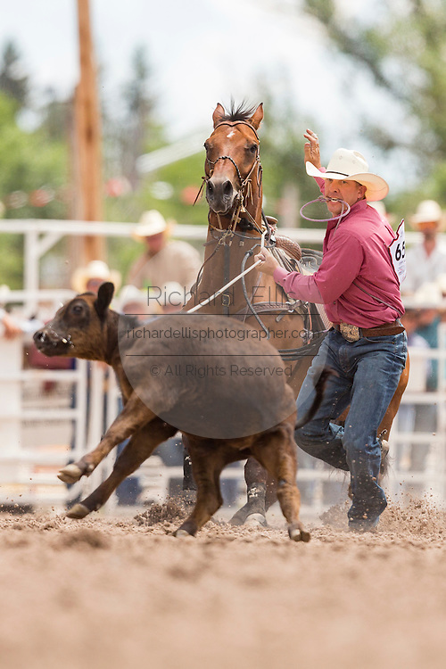 Steer roper Robert Mathis during the Steer Roping finals at the Cheyenne Frontier Days rodeo in Frontier Park Arena July 26, 2015 in Cheyenne, Wyoming.