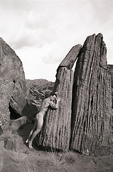 muscular nude man against a rock in Death Valley, NM