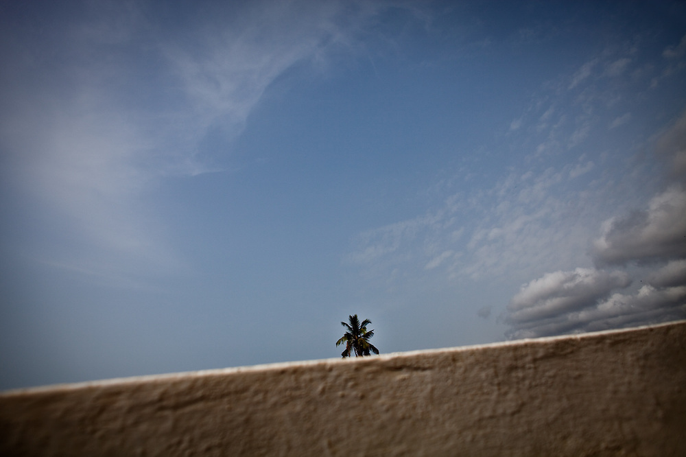 A lone palm tree pokes up from behind a wall at Elmina Castle, a former slave trading post, in the Cape Coast region of Ghana.