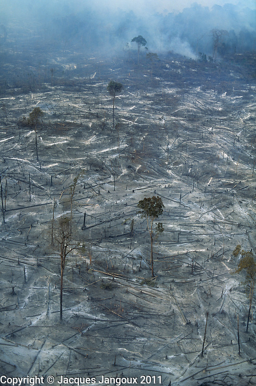 Aerial of smoldering remains of Amazon rainforest burned for clearing for cattle ranching, Para, Brazil