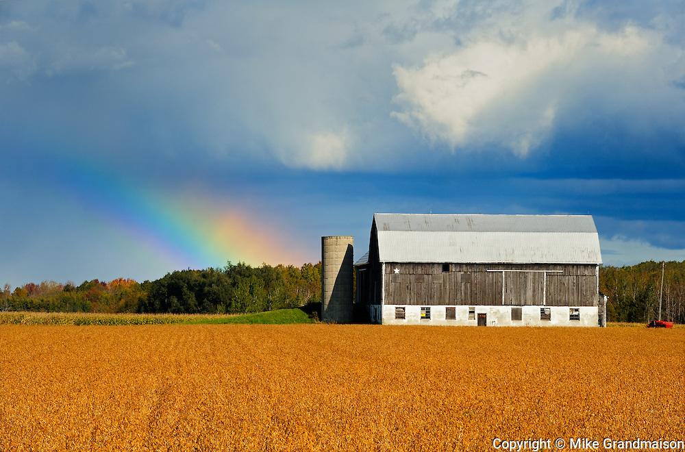soybeans, rainbow, barn<br /> Lindsay<br /> Ontario<br /> Canada