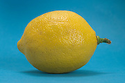lemon against a blue background