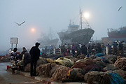 Dawn breaks over the the fishing port of Essaouira, Morocco