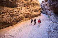 Hiking along Aravaipa Canyon Preserve, AZ. (from east entrance)
