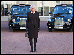 February 14, 2019 - London, London, United Kingdom - Image licensed to i-Images Picture Agency. 14/02/2019. London, United Kingdom. The Duchess of Cornwall  arriving at a reception for the London Taxi Drivers' Charity for Children at Buckingham Palace in  London. (Credit Image: © Stephen Lock/i-Images via ZUMA Press)