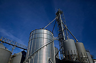 Corn farm grain storage facility, blue sky