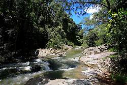 AUSTRALIA QUEENSLAND EUNGELLA NATIONAL PARK 21FEB08 - Stream at the Eungella National Park, Queensland, Australia...jre/Photo by Jiri Rezac..© Jiri Rezac 2008..Contact: +44 (0) 7050 110 417.Mobile:  +44 (0) 7801 337 683.Office:  +44 (0) 20 8968 9635..Email:   jiri@jirirezac.com.Web:    www.jirirezac.com..© All images Jiri Rezac 2007 - All rights reserved.