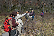 tourists photographing autumn scenic color view Japan