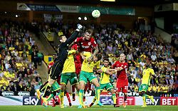 Aden Flint of Bristol City challenges Michael McGovern of Norwich City to the ball - Mandatory by-line: Robbie Stephenson/JMP - 16/08/2016 - FOOTBALL - Carrow Road - Norwich, England - Norwich City v Bristol City - Sky Bet Championship