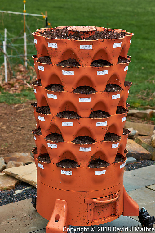 Garden Tower II -- Assembled and Filled with Planter Soil Mix. Image taken with a Fuji X-H1 camera and 60 mm f/2.4 macro lens