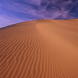 The Kelso Sand Dunes at sunset. Mojave National Preserve, CA.