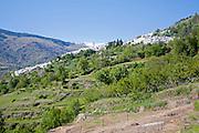 Village of Capileira in the River Rio Poqueira gorge valley, High Alpujarras, Sierra Nevada, Granada Province, Spain