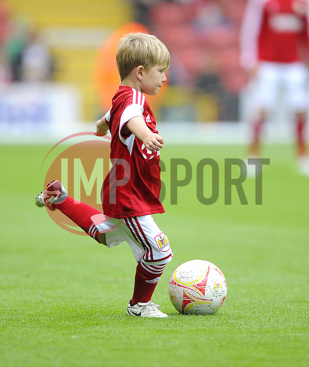 Mascot  - Photo mandatory by-line: Joe Meredith/JMP - Tel: Mobile: 07966 386802 17/08/2013 - SPORT - FOOTBALL - Ashton Gate - Bristol -  Bristol City V Wolves - Sky Bet League One