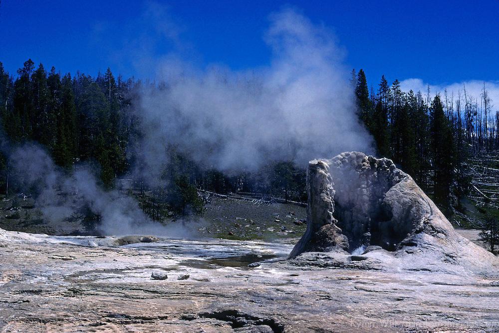 North America, USA, United States, Wyoming, Yellowstone National Park.  Geothermal activity at Yellowstone.