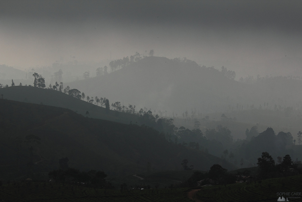 Layers of hills with trees silhouetted against a patch of bright sky near Nuwara Eliya