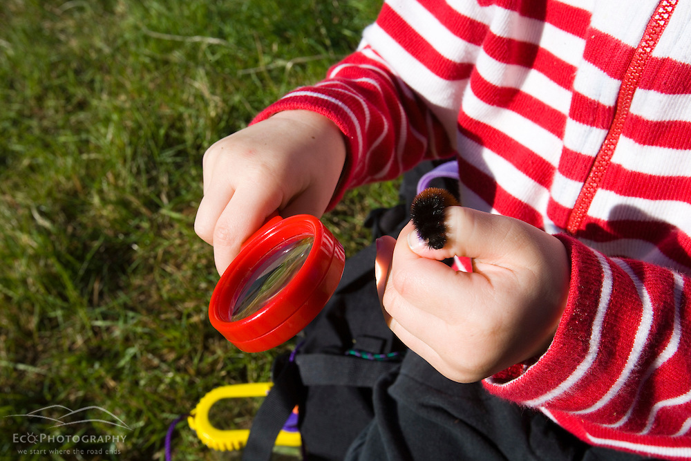 A young girl (age 4) studies a caterpillar on the Common Pasture in Newburyport, MA. MR