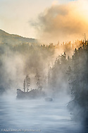 Tees and boulders in Yellowstone River at sunrise, Yellowstone National Park, Montana/Wyoming