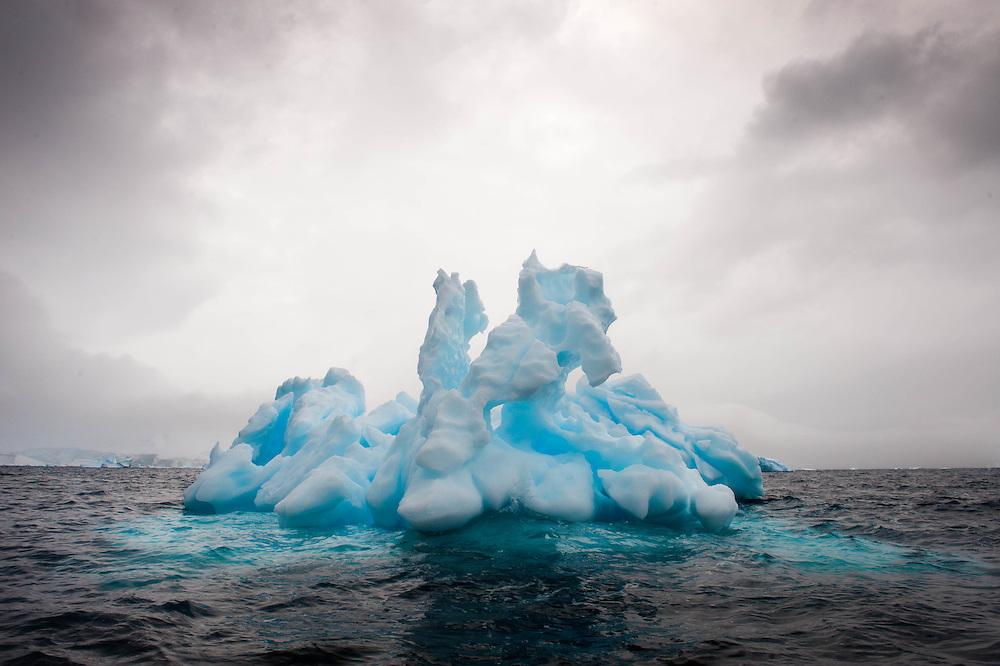 Iceberg, Paradise Harbour, Antarctic Peninsula / Iceberg, Península Antártica