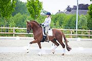 Joyce Lenaerts - Beukenvallei's Iconic B<br /> 2e WK Selectie Jonge Dressuurpaarden 2019<br /> © DigiShots