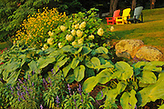 Muskoka chairs and garden<br /> Minett<br /> Ontario<br /> Canada