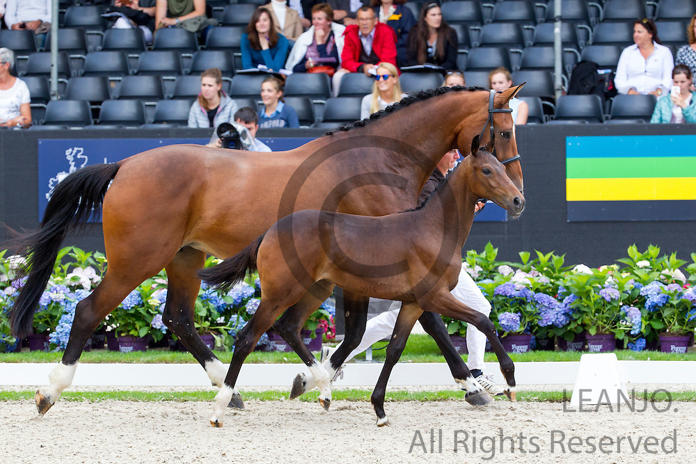 Lady Jane<br /> Excellent Dressage Sales<br /> Longines FEI/WBFSH World Breeding Dressage Championships for Young Horses 2016<br /> &copy; DigiShots