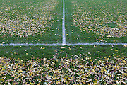 The leaves dropped from overhead ash trees have been blown off football pitch lines by council workers in Ruskin Park, London borough of Lambeth.